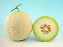 MUSLMELON- MUSKAN-50GM.MRP-2750. KNOWN YOU SEEDS