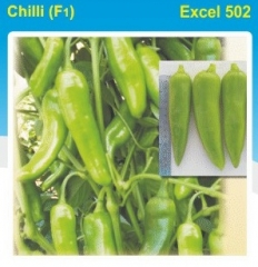 CHILLY (F1)- EXCEL 502-10 GM. MRP-560.