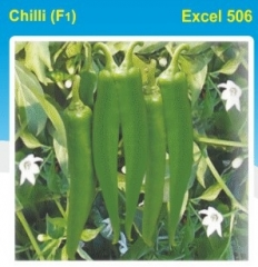 CHILLY (F1)- EXCEL 506-10 GM.MRP-465.