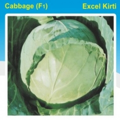CABBAGE(F1)- EXCEL KIRTI - 10 GM. MRP-315.