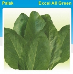 PALAK-EXCEL ALL GREEN- 500 GM. MRP-110